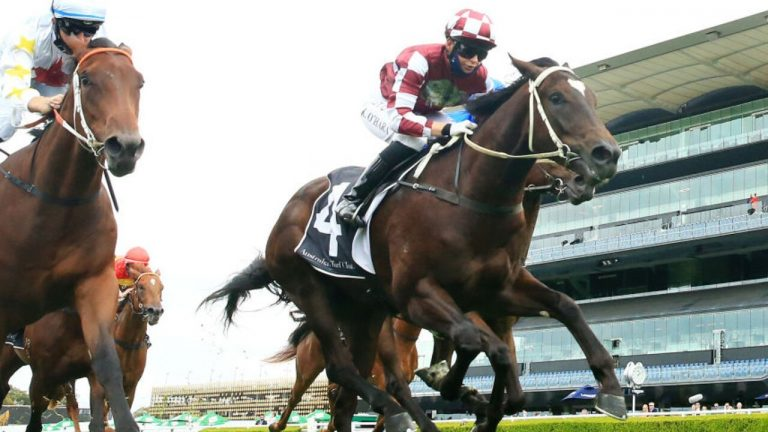 Another Record Breaking Day at Inglis Easter Sale